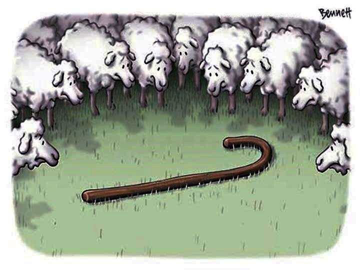 ovelhas-sem-pastor