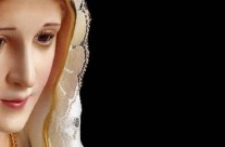 Mês de maio – Mês de Maria – 2015