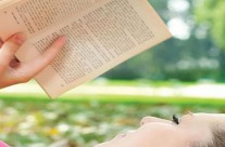 Sugestão de leitura para férias
