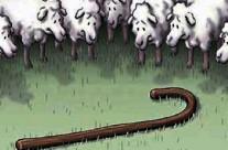 Como ovelhas sem pastor!