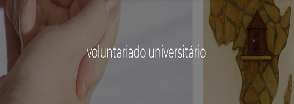Voluntariado Universitário