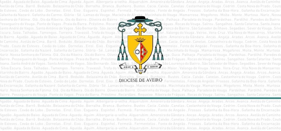 dioceseAveiro